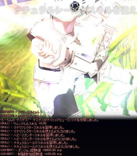 mabinogi_2008_04_05_007ゲス