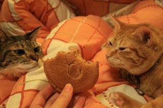 凛&小梅、あ、パンだ