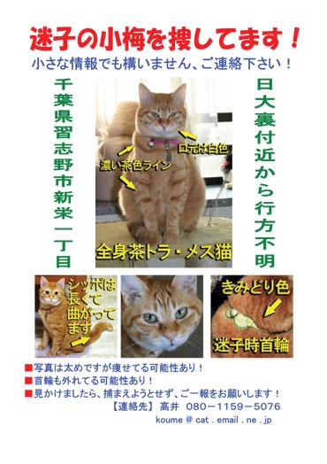 koumeposter-web2.jpg