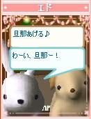 37-pet_shima2.jpg