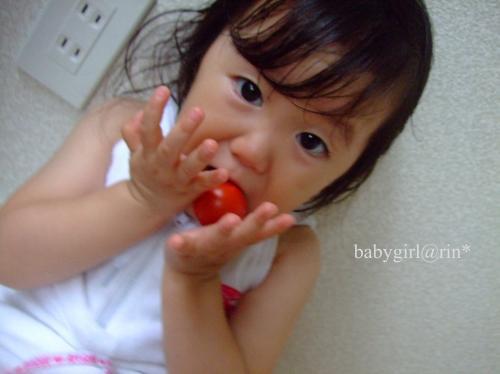 tomatoo.jpg