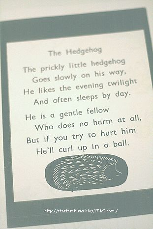Hedgehogの詩