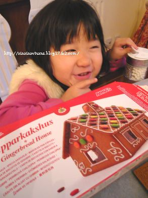 IKEA gingerbread  house kit