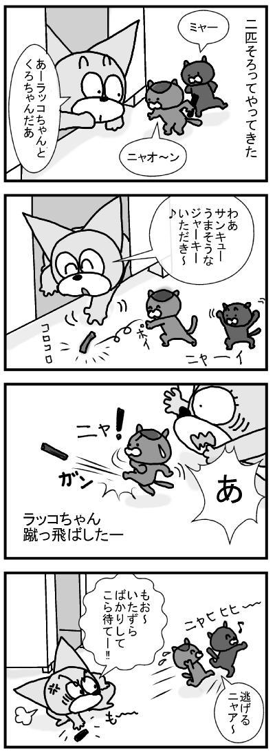 535 ラッコちゃん&くろちゃん ブログ用