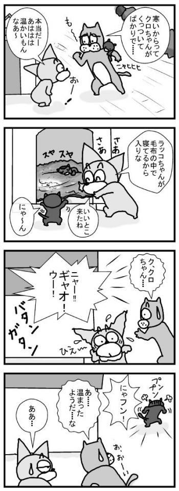 554 寒がりなネコ ブログ用