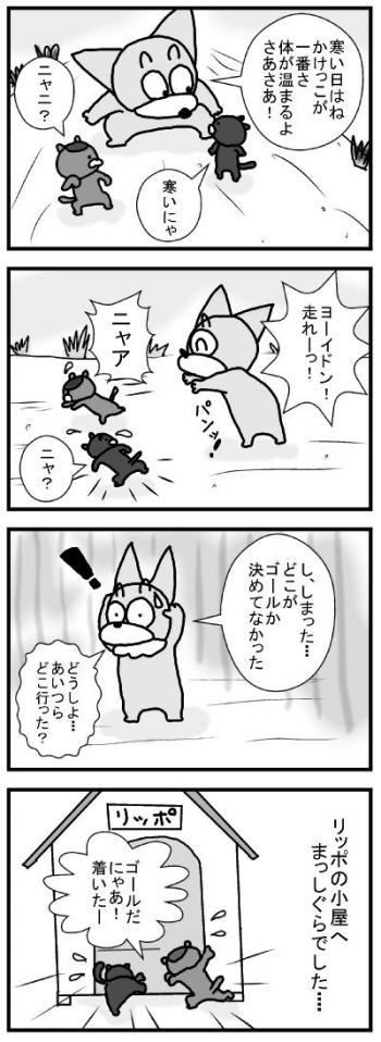 564 ネコちゃんレース ブログ用