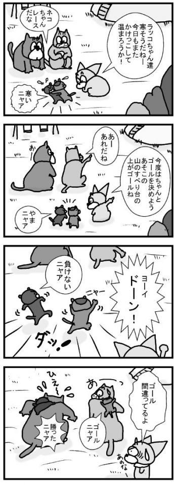 565 567 ネコちゃんレース2