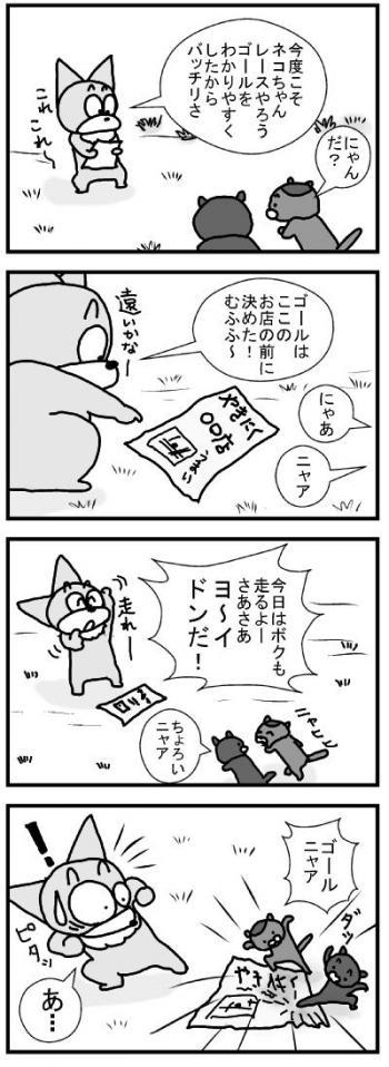 566 ネコちゃんレース3 ブログ用