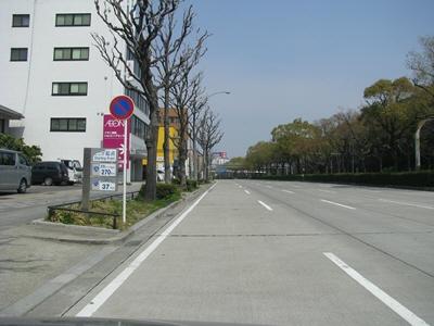 Kawasaki Lx