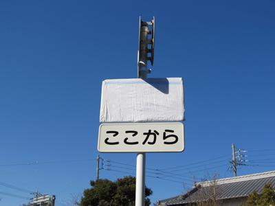 bl-m317de.jpg