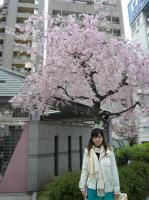桜と。。。