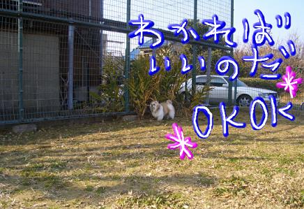 200101242.jpg