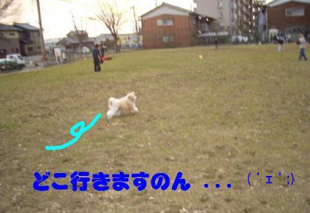 200701181.jpg