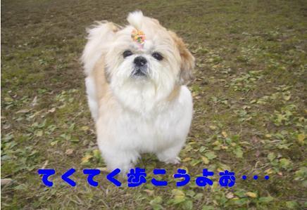 200701182.jpg