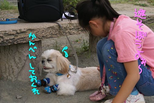 200705094.png