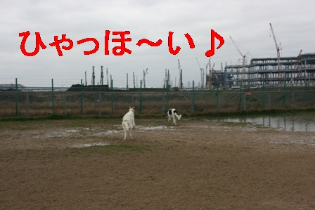 IMG_8051.jpg