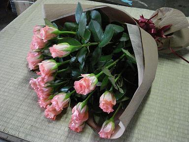 2008-05-09.jpg