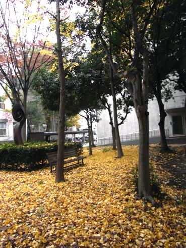 RIG466.jpg