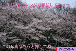 0904050pochi.jpg