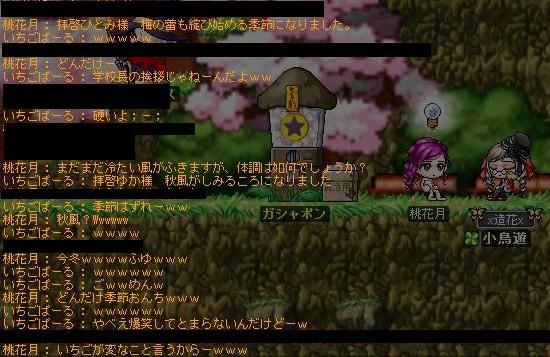 Maple1069.jpg