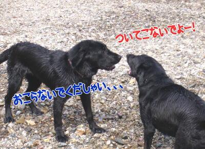 image206.jpg