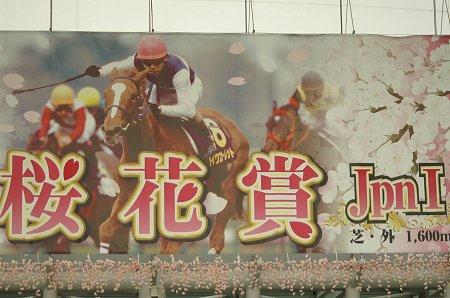 桜花賞2008.