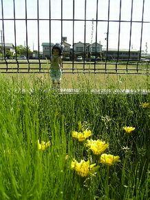 2かねち2008net版