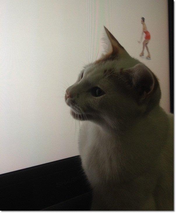 1listsuke-to20111113-2.jpg