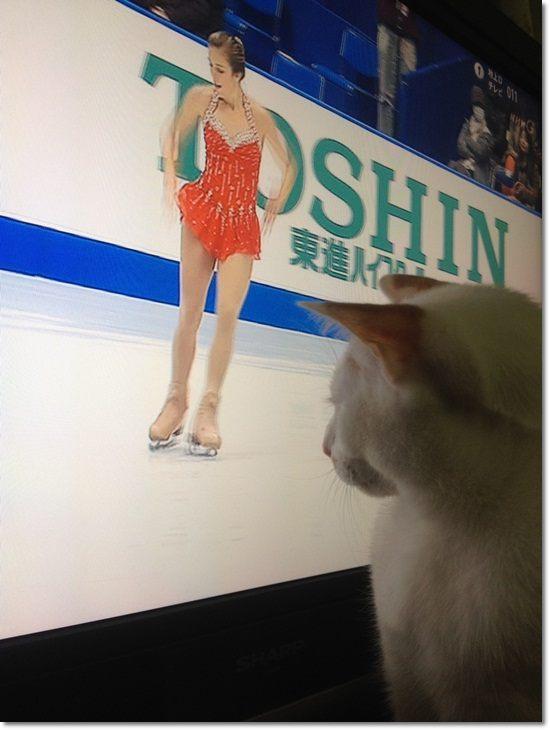 1listsuke-to20111113-3.jpg