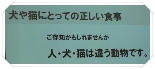 1semina-20111015 (2)