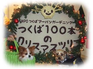108-1.jpg
