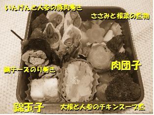 119-5.jpg