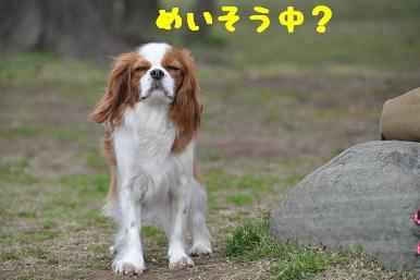 20090404_川原_07