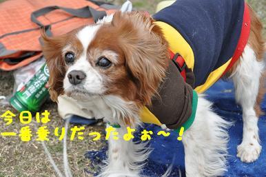 20090404_川原_08