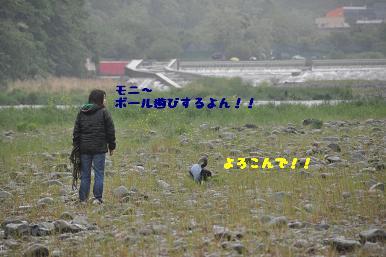 20090506_15