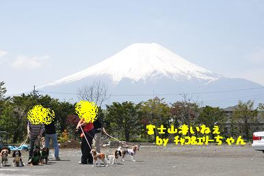 20090510_12