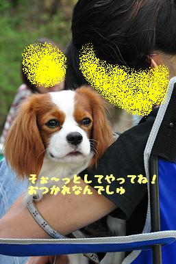 20090510_23