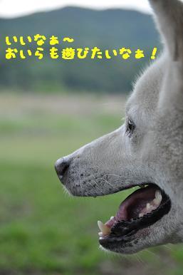 20090514_09