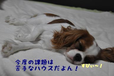 20090607_39