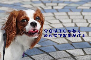 20090725_01