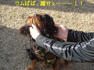 20080110_川原_19