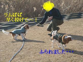20080110_川原_09