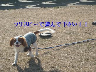 20080110_川原_07