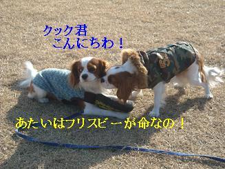20080110_川原_08
