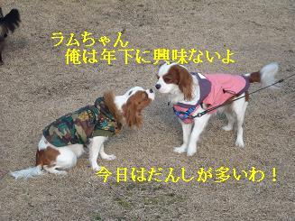 20080110_川原_11