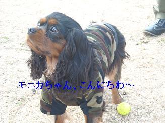 20080110_川原_03