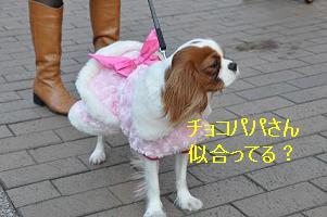 グランベリー社会勉強_14