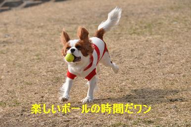 20090211_川原_02