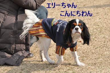 20090211_川原_03