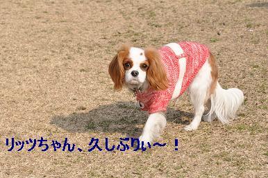 20090211_川原_05